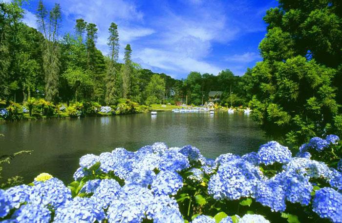 Gramado e Canela serra gaucha flor da serra turismo